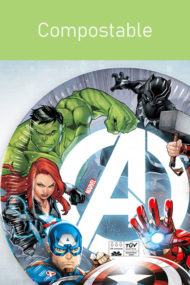 Avengers Fight by Procos