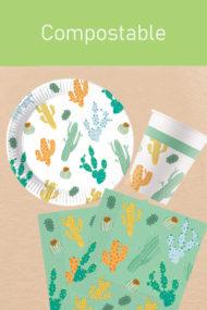 Cacti by Procos