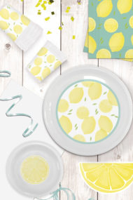 Lemons Reusable by Procos