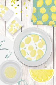 Lemons Reusable by Procos