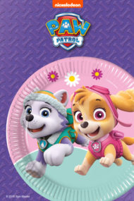 Paw Patrol Skye & Everest by Procos
