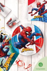Decorata™ Compostable Spider-Man Super Hero  by Procos