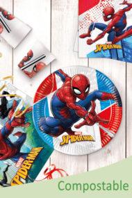 Spider-Man Super Hero  by Procos