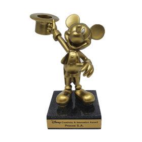 Disney Creativity & Innovation Award - Procos