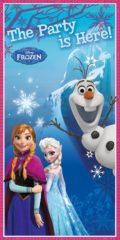 Frozen Northern Lights - Door Banner - 84631