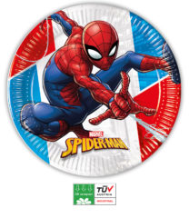 Spider-Man Superhero Compostable - Paper Plates 23 cm  - 90948