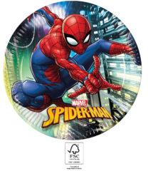 Spider-Man Team Up - Paper Plates 23 cm. FSC. - 93433