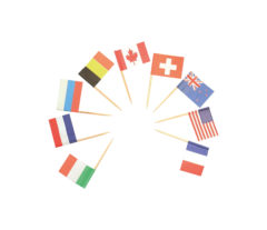 """Decorata™ Wooden Products - Decorated Toothpicks """"Country Flags"""" - 82536"""