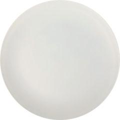 Solid Color Reusable - Light Grey Reusable Plate 25,8 cm - 92161