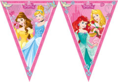 Princess Dreaming - Triangle Flag Banner (9 Flags)